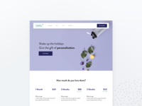 Holiday Gift Card Landing Page