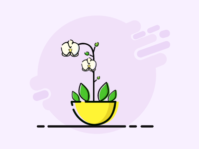 Orchid nature flora design icon ilustration orchid flower