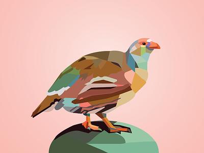 Caucasian Snowcock illustration bird art polygon