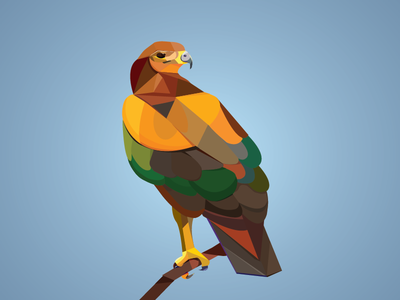 The eastern imperial eagle charechter illustration polygon art vector