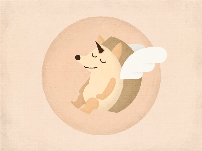 Hedgehog hedgehog cute animal wings overlay textured angel illustration character characterdesign photoshop illustrator