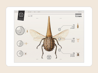 Insect Definer - IPad app mobile interactive ux ui ipad app