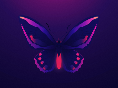 Neon beauty nature illustration nature art wildanimals animals landscape purple sunrise moonlight beautiful beauty flyingbug bug neonlights adobeillustrator adobe illustration purpleshade
