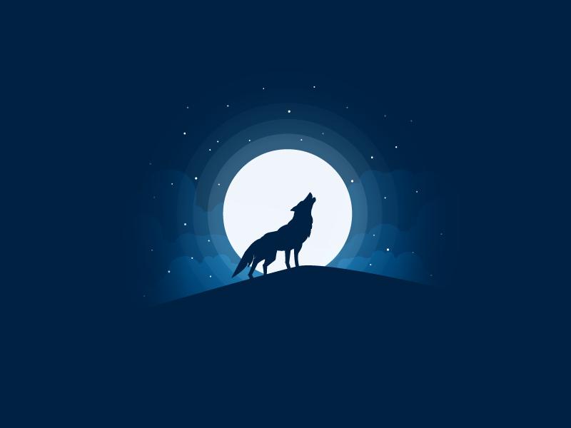 Wolf icon a day vector art flat illustration wolf danger animal moon moonlight stars light
