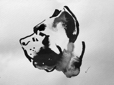 Cigars package illustration ink dog