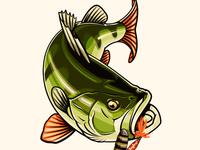 Perch for Abu Garcia Fishing