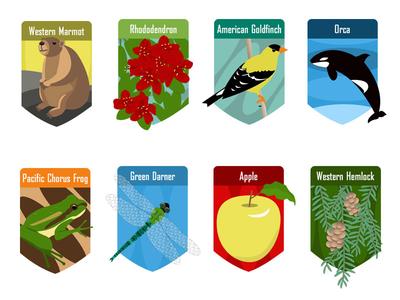 Washington State Symbols Badges