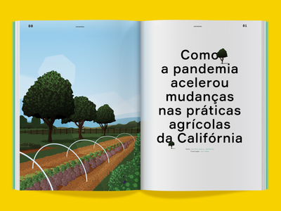 Agriculture Network for Sustentável Magazine tree california nature agriculture vector magazine magazine illustration illustration