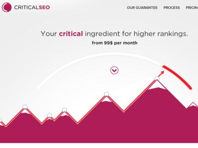 CriticalSEO website