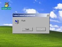 Mood experience