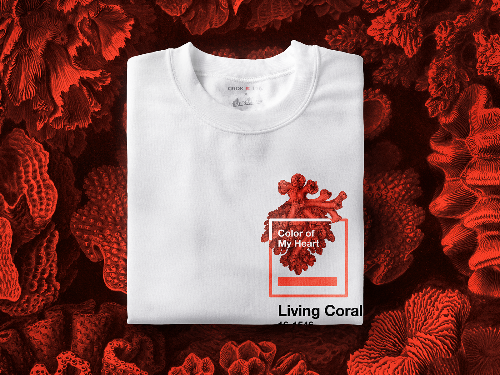 Coral Of My Heart