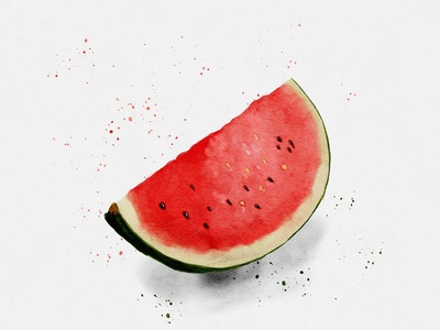 Watermelon 🍉 watercolor painting illustrations illustration