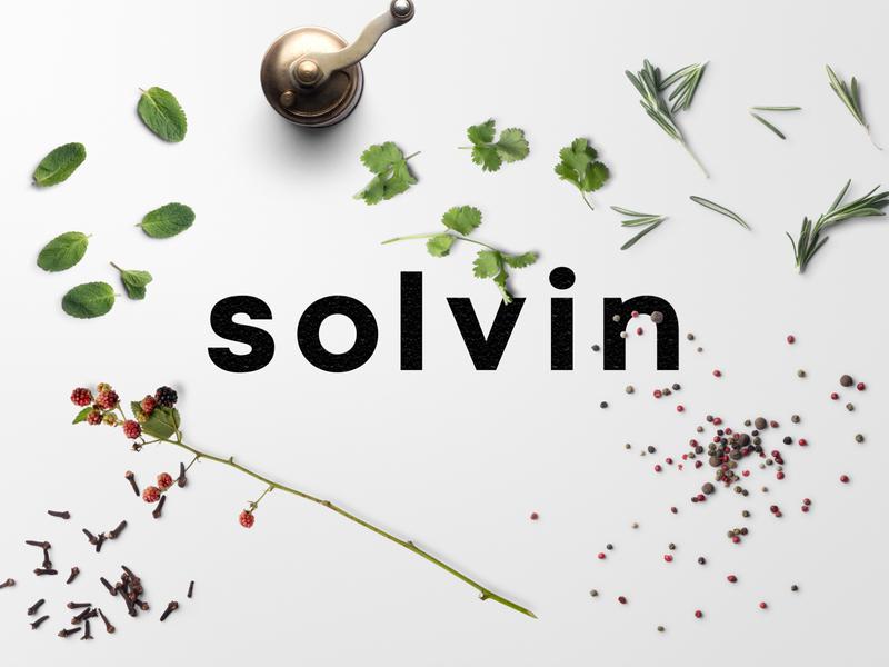 solvin mockup typography brand branding logo