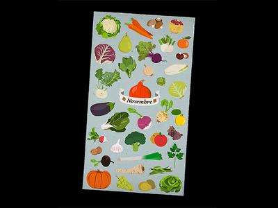 Seasonal fruits and vegetables - November
