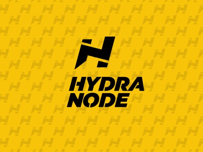 Logo Hydranode - your own Bitcoin and Lightning node. bitcoin services lightning node bitcoin branding ui design logo