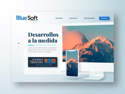 BlueSoft website proposal