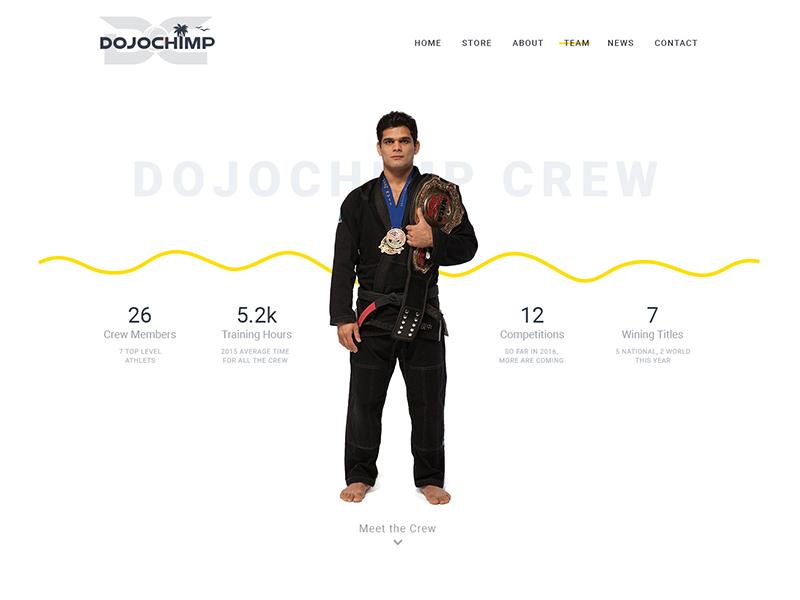 DojoChimp Website jimdo webdesign
