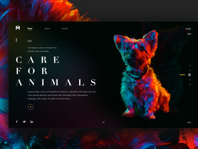 Care for animals design click flip style register share animals  classification theme carnival webpage discover color