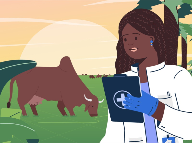 Appui budgetaire veterinary health scientific union africa landscape sun animals cow science creative direction motion graphics art direction characters motion design illustration design animation 2d