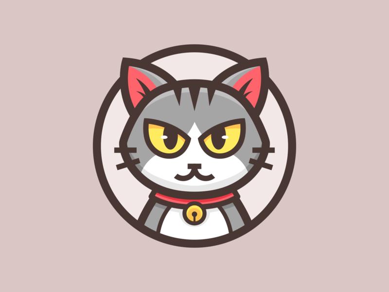 Cat_🐈 eyes cool animal cat