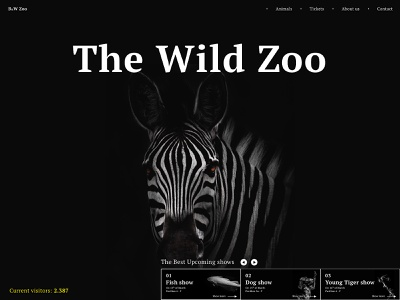B&W Zoo Webpage easy design website design zoo animals wireframe webpage website user interface illustration clean sketch vector films movies movie app ux ui mobile design mobile app appdesign app