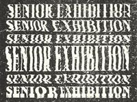 Senior Exhibition Distortion