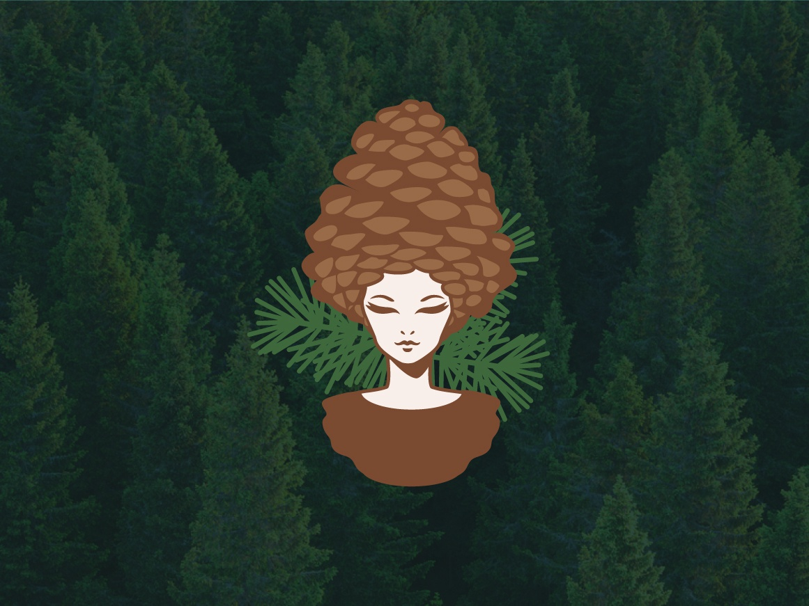 The forest girl forest stylised girl pine cone illustration logo 2d