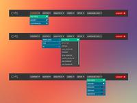 CMS toolbar