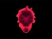 Wrapped Skull