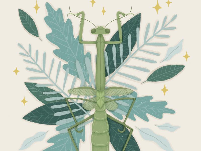 Folktale Week Illustration - Insect study precious botanical challenge digital illustration creature leaves nature magic insect mantis illustration