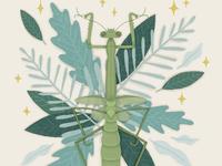Folktale Week Illustration - Insect