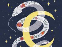 Folktale Week Illustration - Animal