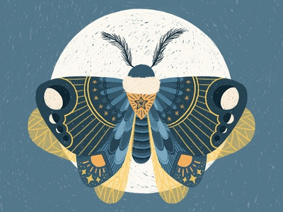 Moth Full Moon Illustration