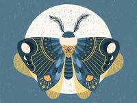 Moth Full Moon Illustration