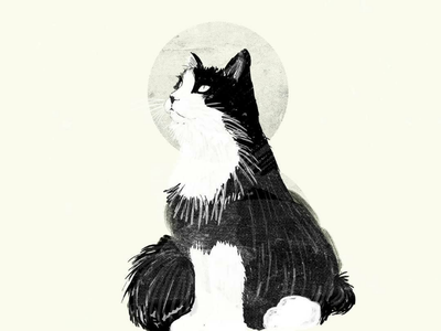 My cat: Ozzy kitten cat editorial illustrator illustrations illustration