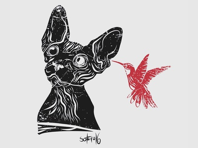 Tolérance II dribbble drawings black sphynx editorial shot illustrator bird cat illustration