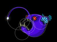 Angler shottt circles