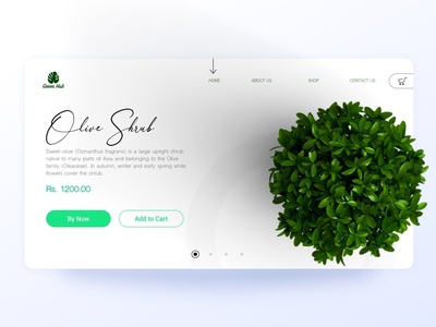 Green HUB - Plant selling website