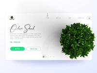Green HUB - Plant selling website