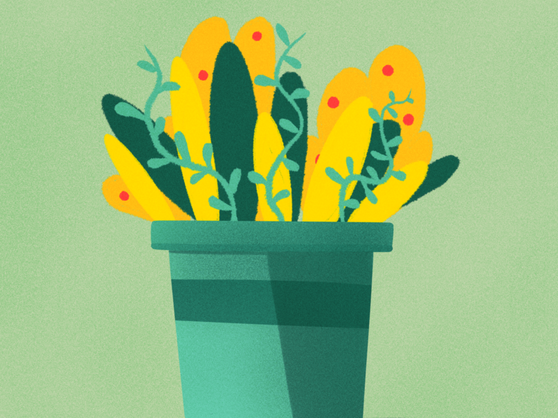 iPlant yellow green plant illustration procreate ipad pro doodle pot leaves plant