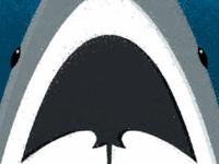 Sharks & Rays - Vancouver Aquarium