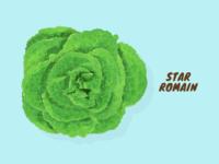 Star Romain