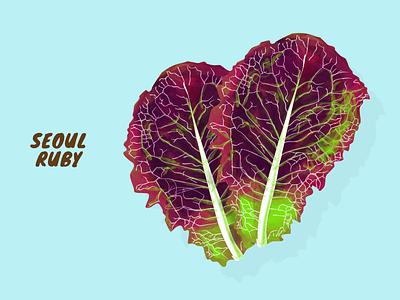 Seoul Ruby vegetable veggies vector illustration artwork