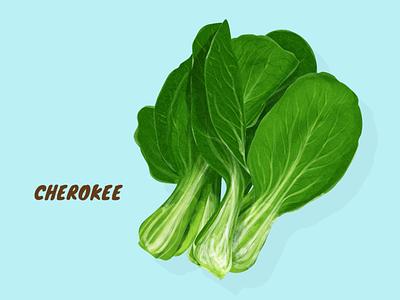 Cherokee veggies vegetable vector illustration artwork