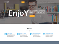 Liendo – Multipurpose Landing Page Template