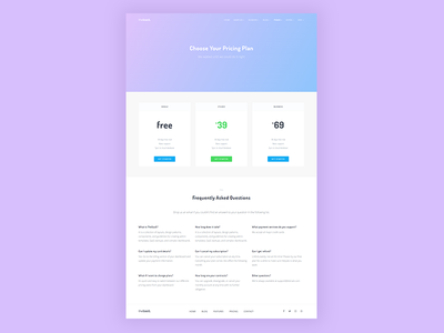 Pricing page startup saas gradient page plans faq pricing
