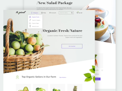 An online grocery shopping idea practice
