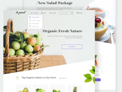 An online grocery shopping idea
