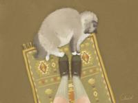 Little fat cat