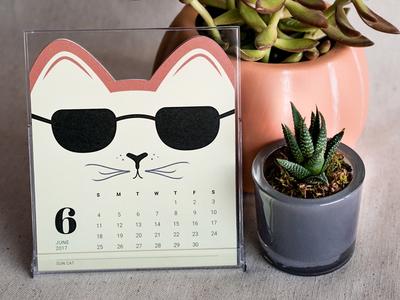 Cat of the Month Calendar: June product packaging desktop 2017 june calendar dieline kitty cat